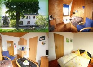 Bild Kleine Ferienwohnung Ebert&Green im Erzgebirge